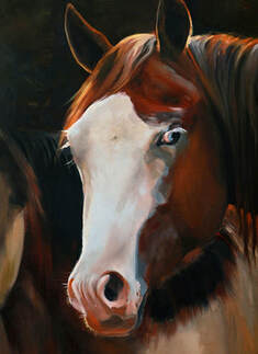 oil painting of horse with Splash White